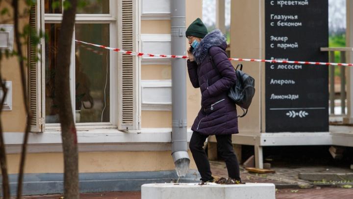 В Ростовской области выявили еще 309случаев коронавируса, умерли 18человек