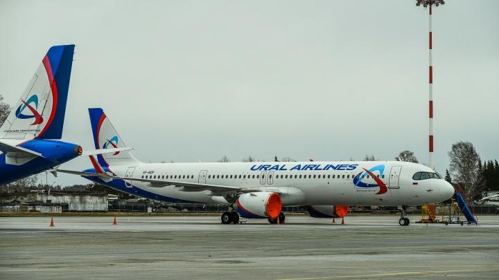 В Германии протаранили самолет «Уральских авиалиний». Airbus повредили в аэропорту