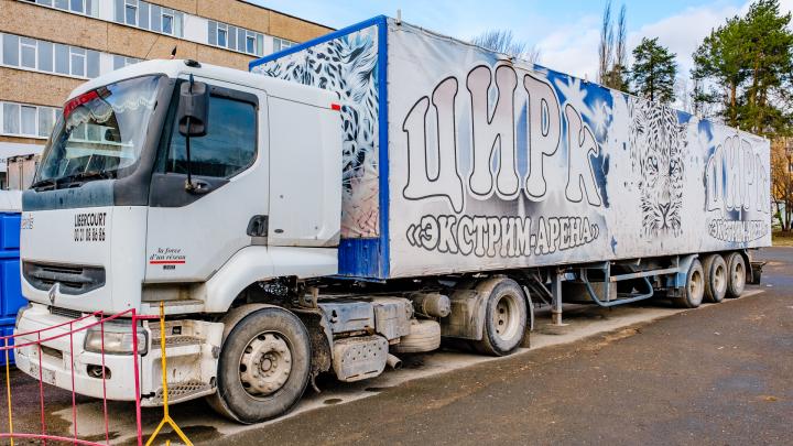 Из-за пандемии коронавируса в центре Краснокамска осталась фура передвижного цирка — в ней живет крокодил
