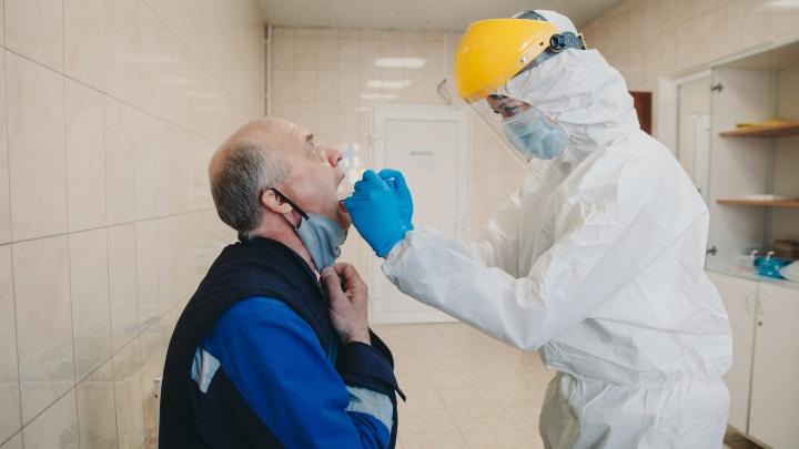 Рекордное низкое количество новосибирцев заразилось коронавирусом за сутки. Такого давно не было