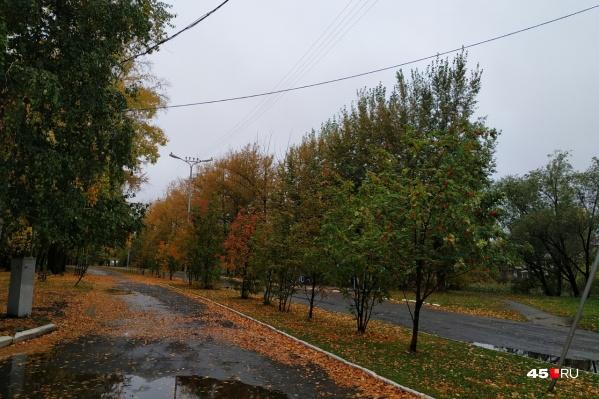 После недели дождей сентябрь порадует курганцев теплой и сухой погодой