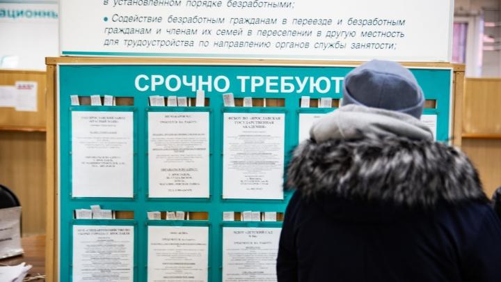 Предлагают зарплату от 100 тысяч рублей: топ-10 вакансий для ярославцев