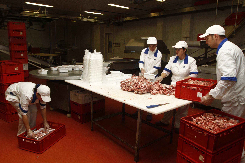 Руководство агрофирмы «Ариант» подозревают в хищении из бюджета более187 миллионоврублей