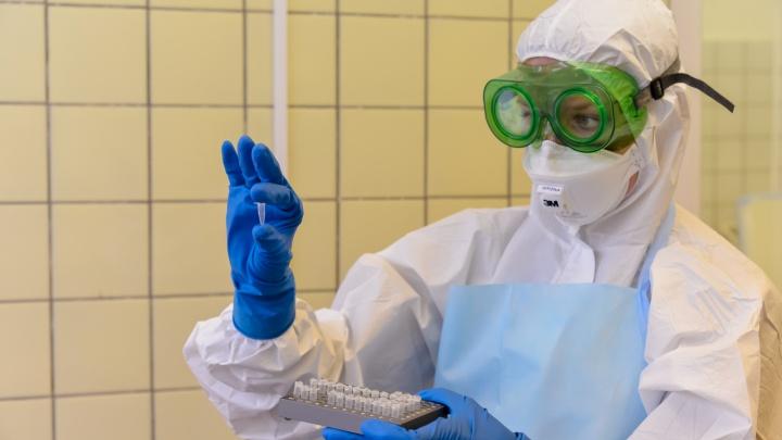 Оперштаб России подтвердил 207 новых случаев COVID-19 в Архангельской области