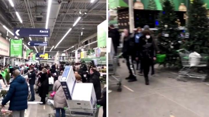 «Даже тележек не хватает»: огромная толпа покупателей в «Леруа Мерлен» попала на видео