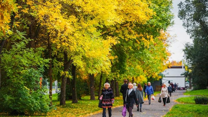 В Кузбассе будет холодная неделя с мокрым снегом: синоптики сообщили, каких сюрпризов погоды ждать