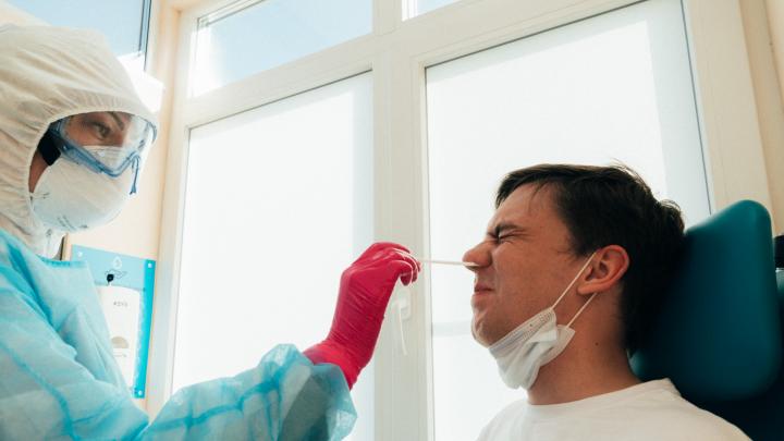 Тест на прочность: как в Омской области справляются с анализами на коронавирус