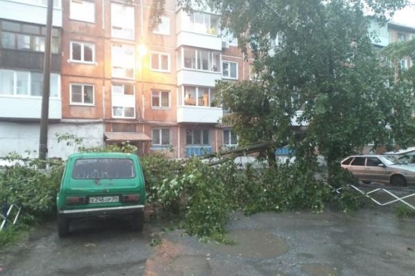 """После порывов до <nobr class=""""_"""">25-30 м/с</nobr> в Красноярске и окрестностях можно застать такую картину — паркуйте машины подальше от балконов и деревьев"""