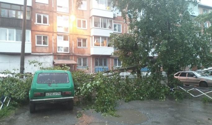 В ночь на пятницу в Красноярске ожидается усиление ветра