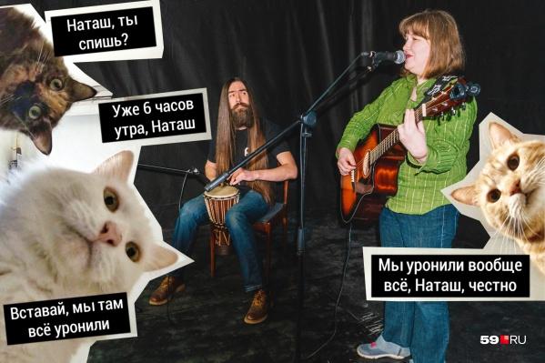 Помните котиков из мемов про Наташу? Музыканты группы «НеКровать» сочинили про них песню