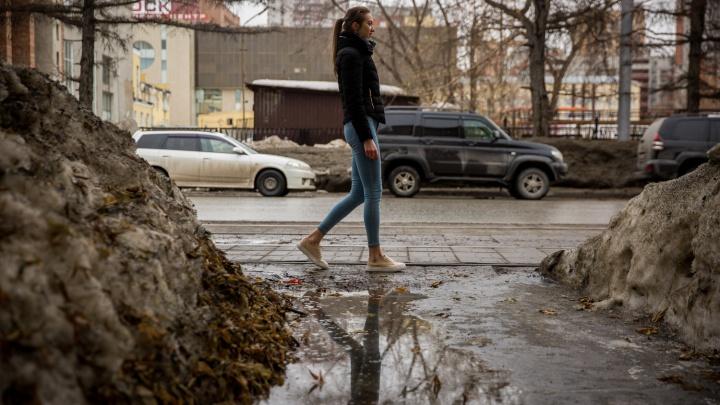 Холодные ночи с мокрым снегом, а днём — до +15. Новосибирские синоптики дали новый прогноз
