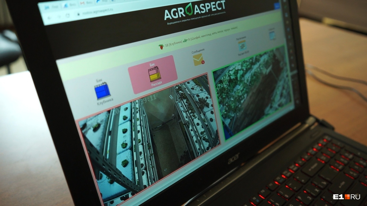Компьютер в Екатеринбурге может включить полив или выключить свет на ферме в любой точке страны