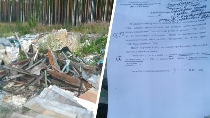 Прокуратура выяснит, кто выбросил в лесу медицинские документы с печатями больницы № 40