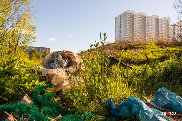 В логу по берегам реки везде разбросан мусор