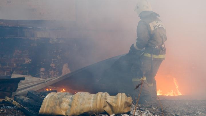 Мать с сыном погибли на пожаре в Камышине