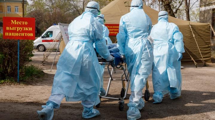 Счет пошел на сотни: смотрите, как растет в Волгограде число больных коронавирусом