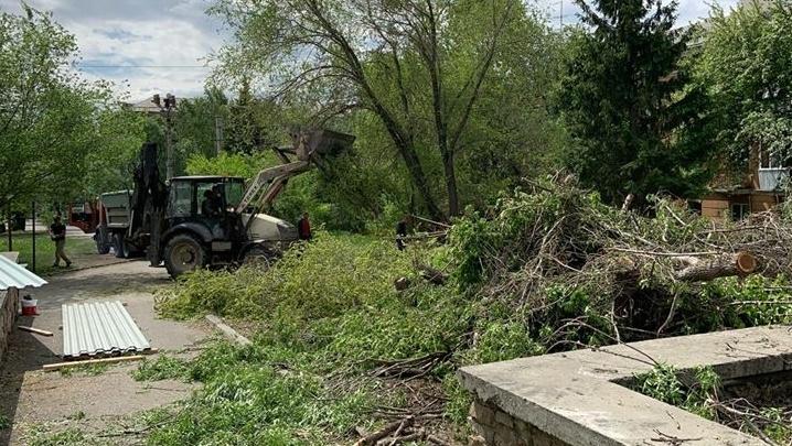 В челябинском сквере вырубили деревья под строительство аптеки