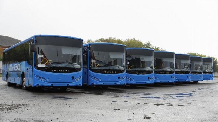 За неделю в Кузбасс привезут 17 новых автобусов. Стоимость каждого — более 8,8 млн рублей