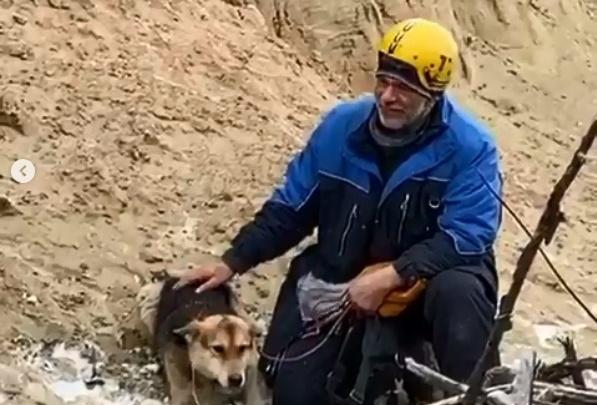 «Несмотря на разжигание ненависти, мы готовы рискнуть здоровьем»: волонтеры достали собаку с обрыва