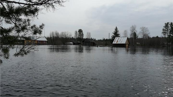 На севере края затопило поселок староверов. На помощь людям готов вылететь вертолет