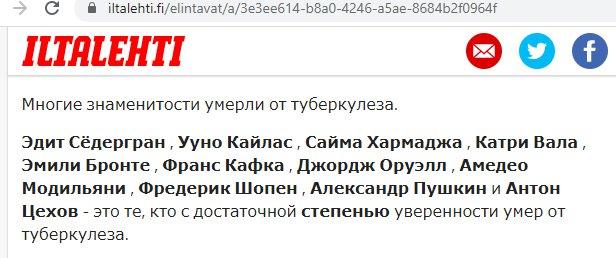 Электронный перевод статьи, скриншот с сайта iltalehti.fi