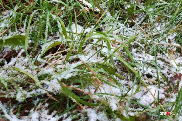 Сегодня утром в Архангельске выпал первый снег. И почти сразу растаял