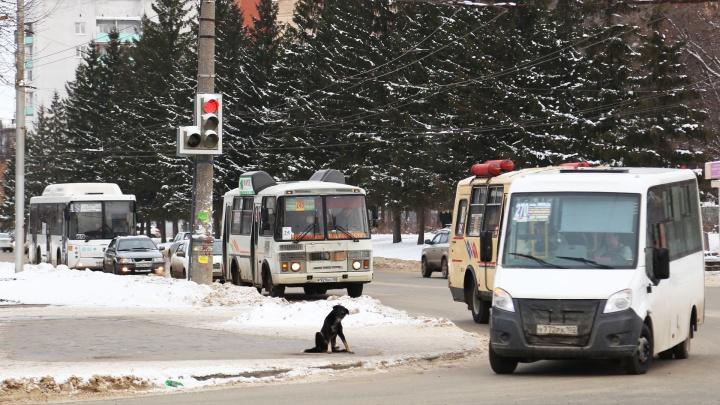 В Уфе водитель выгнал ребенка из автобуса и послал куда подальше