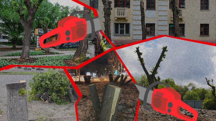 Кто пилит Челябинск: разбираемся, как мегаполис превратился в столицу пеньков