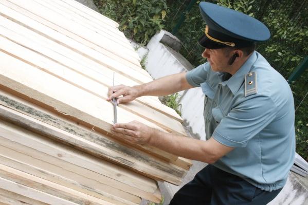 Бизнесмен использовал фиктивные документы, которые подтверждали происхождение древесины