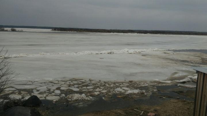Ледоход в Архангельской области добрался до Верхней Тоймы