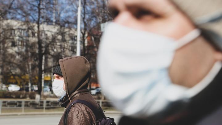 Глава Котласа сообщил о двух условно подтвержденных случаях коронавируса в городе