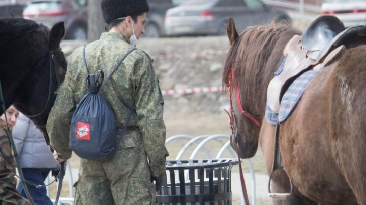 В Екатеринбурге к патрулированию улиц подключились дружинники и казаки: законно ли это