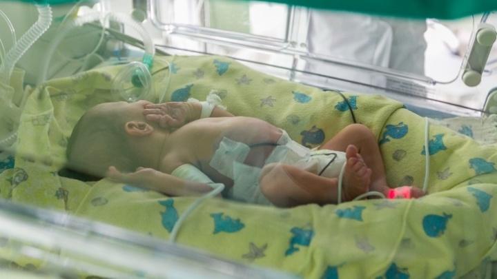 Завернули в пакет: СК проводит проверку по факту смерти новорожденного
