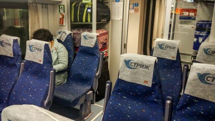 Скоростной поезд «Стриж» пройдёт через Стригино до Санкт-Петербурга