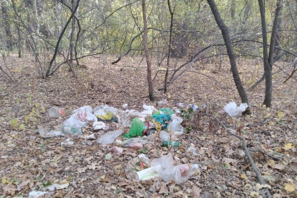 Собирать мусор волгоградцы будут на время