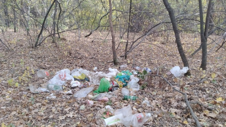 «Там просто горы мусора»: волгоградцев зовут побегать и прибраться в Волго-Ахтубинской пойме