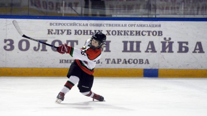 В Перми пройдет матч с участием легенд отечественного хоккея