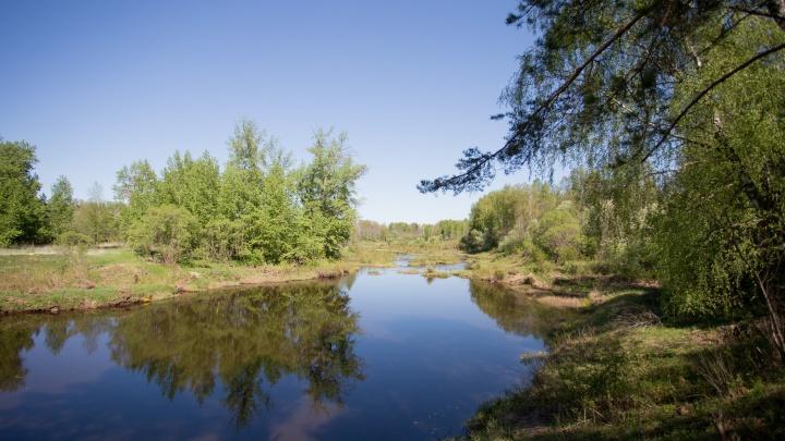 В Рыбинске в реке нашли мертвым 16-летнего подростка: что случилось