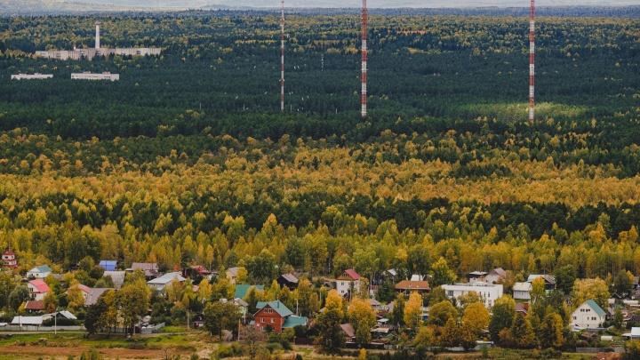 Больше всего зараженных COVID-19 за сутки выявили в Перми, Березниках и Пермском районе