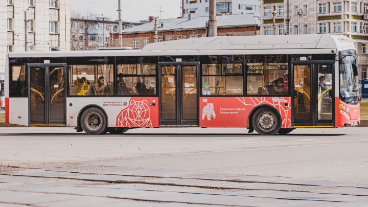 Для дачников запустят дополнительные автобусы до Перми I