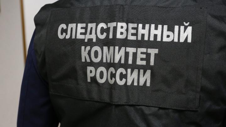 Подозреваемого в изнасиловании 15-летней девочки в Челябинске отправили в следственный изолятор