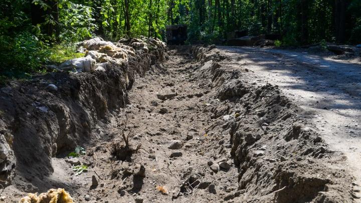 В Екатеринбурге стартовал прием замечаний к проекту обновления Шарташского лесопарка