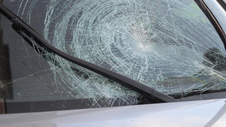 На Серовском тракте таксист сбил лося и чудом остался жив