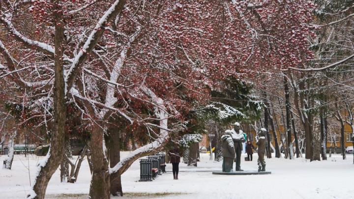Станет холоднее: прогноз погоды в Екатеринбурге на выходные