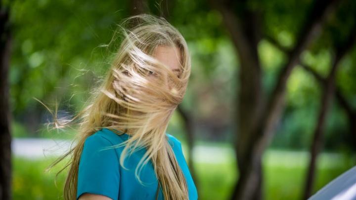 Последние дни весны будут ветреными: синоптики дали прогноз на ближайшие выходные
