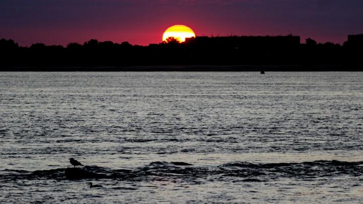 Нежное утро бабьего лета — в объективе волгоградского фотографа