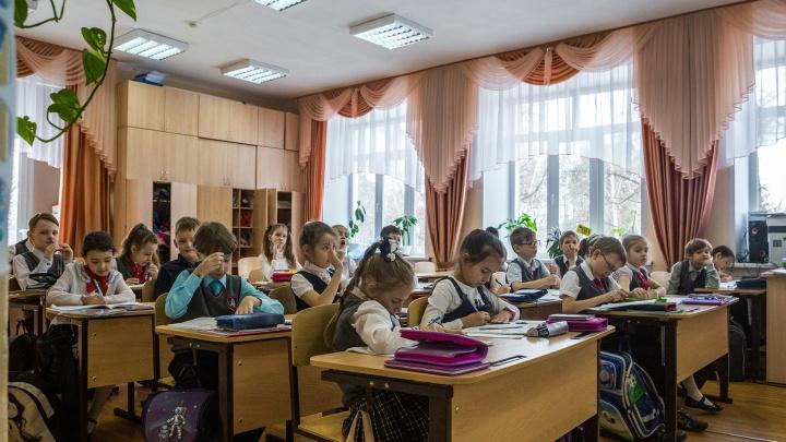 Кирпич с пластом знаний. Почему учебники должны исчезнуть из школ — объясняет директор колледжа