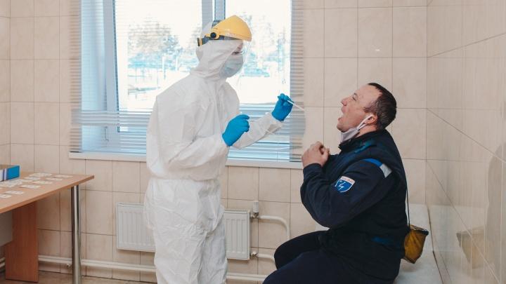 Третий день растём одинаково: оперштаб сообщил о количестве заболевших в Ярославской области 15 мая
