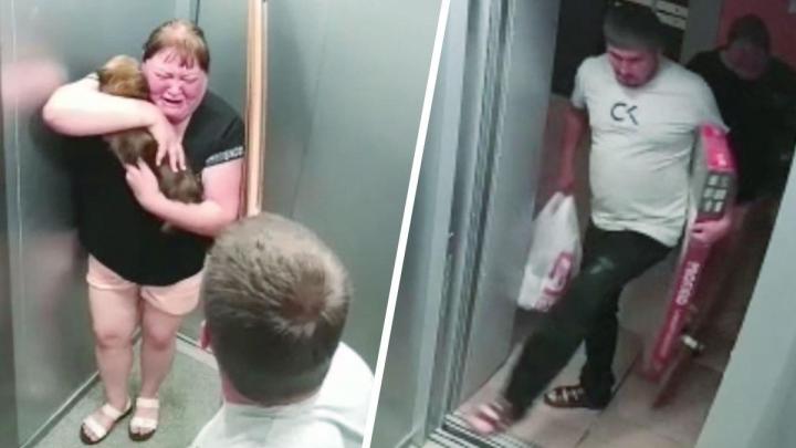 «Я тебе дома устрою, тварина»: на Латвийской в лифте мужчина жестоко избил собаку
