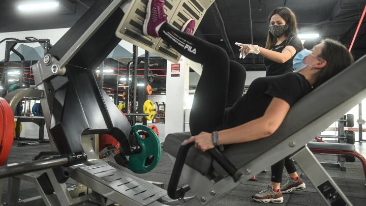 Свердловские власти ответили, будут ли пускать в фитнес-клубы без QR-кодов